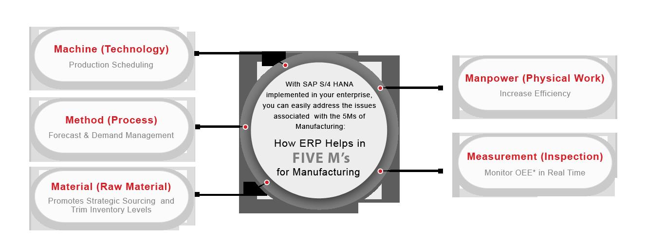 Diverse Infotech - SAP Automotive Qualified Solutions